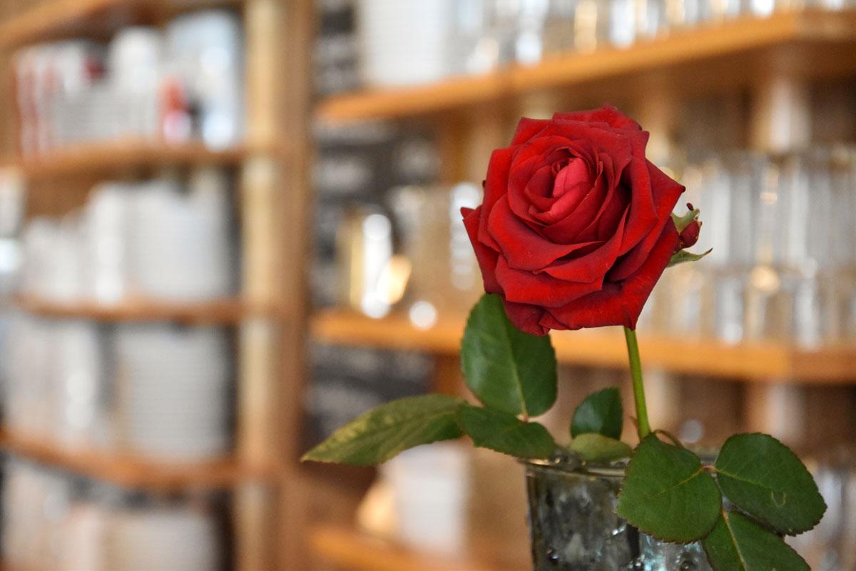 strandkorb-rose